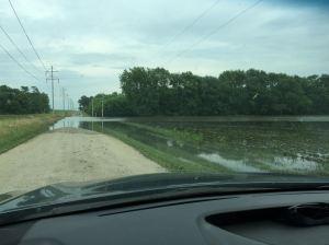 Flooded_Former_Bean _Field